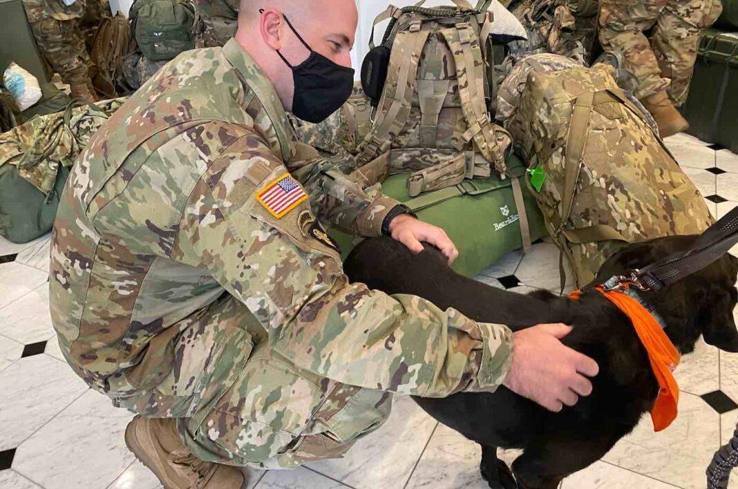 Des chiens thérapeutiques surprennent les troupes de la Garde nationale à Washington, D.C. qui pourraient être en train de perdre leurs propres animaux de compagnie