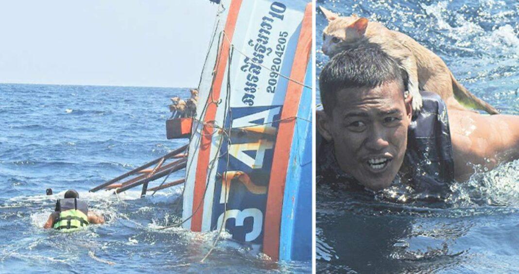 Un marin héroïque plonge dans des mers agitées pour sauver 4 chatons d'un bateau en feu