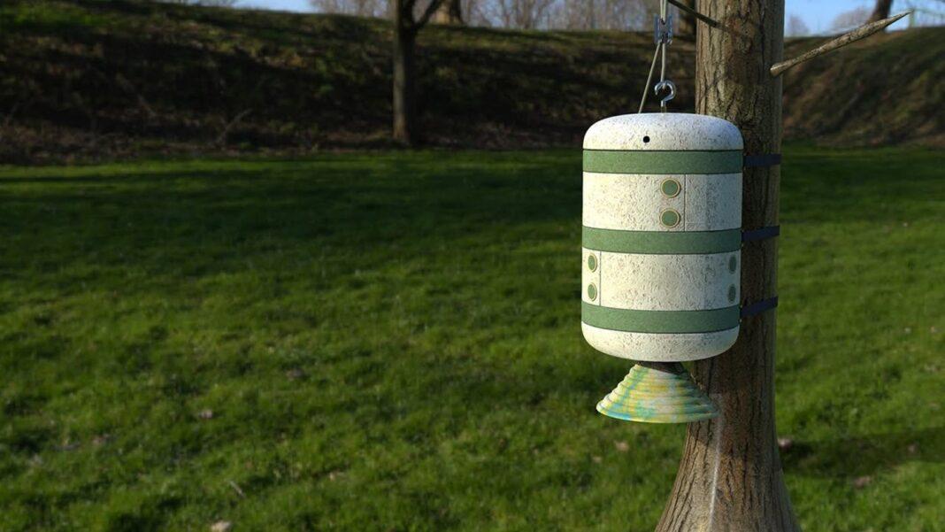 Ces ruches à champignons maison pourraient sauver les abeilles d'Irlande